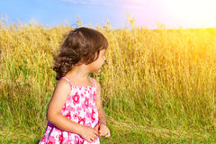 Girl in a wheat field Stock Photos