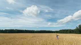 Girl in a wheat field Stock Images