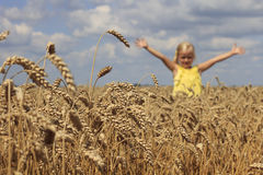 Girl in wheat field Stock Photo