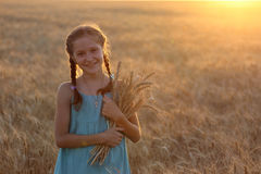 Girl on a wheat field Stock Image