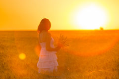 Girl on a wheat field Royalty Free Stock Image
