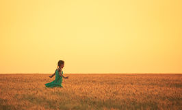 Girl on a wheat field Royalty Free Stock Images