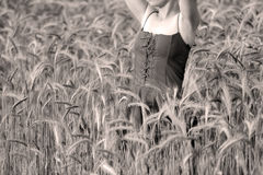 Girl in the wheat Royalty Free Stock Image