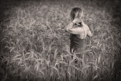 Girl in the wheat Royalty Free Stock Photos