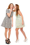 Girl whispering a secret to her friend Stock Photography