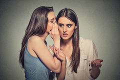 Girl whispering into woman ear telling her shocking secret. Girl whispering into women ear telling her something funny and shocking secret. Human communication Royalty Free Stock Photography