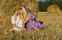 Girl whispers something. Beauty talebearers on the nature sitting Stock Images