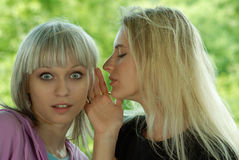 Girl whispers to the girlfriend. Two young girls tell each other hearings and gossips about all Stock Images