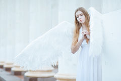 Girl with white angel wings stock images