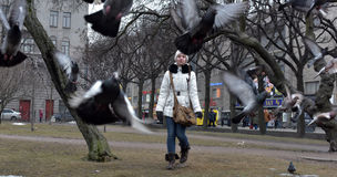 Girl in a white coat and hat a plurality of pigeon Stock Image