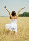 Girl  in white dress at cereals field Stock Photos