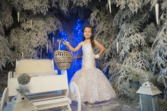 Girl in a white dress in a fairy-tale  forest Stock Photos