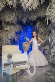 Girl in a white dress in a fairy-tale  forest Stock Photography