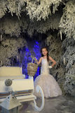 Girl in a white dress in a fairy-tale  forest Stock Images