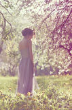Girl in white dress among flowering branches royalty free stock photo