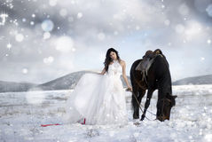 Girl in a white dress on a horse stock photography