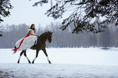 Girl in a white dress on a horse Royalty Free Stock Images