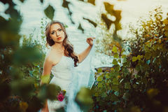 Girl in white dress near the river. Girl bride is in a dress by the river at sunset Stock Images
