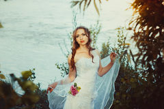 Girl in white dress near the river. Girl bride is in a dress by the river at sunset Stock Photos