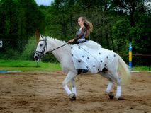 The girl in a white dress on a white horse. Stock Photo