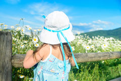 Girl in white hat looking at the beautiful field of daisies Royalty Free Stock Photo