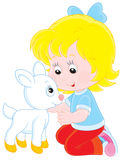 Girl with a white kid. Little girl caresses a small white goatling Stock Photos