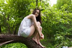 Girl in white over forest Stock Photography