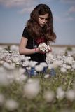 Girl in white poppy field Stock Photos