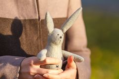 Girl with white rabbit Stock Images