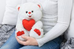 Girl in a white sweater holding a teddy white bear royalty free stock image