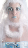Girl wih creative winter makeup and veil Royalty Free Stock Photography