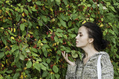 Girl and wild apple tree Stock Images