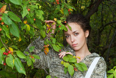 Girl and wild apple tree Royalty Free Stock Photo