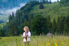Girl and wildflowers. Small girl gather field flowers on mountainside stock photography