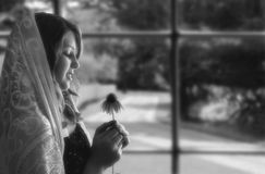 Girl by Window. Girl's profile by window, wearing a shawl on her head, looking at echinacea flower Royalty Free Stock Photos