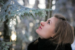 A girl in winter. Beautiful girl in winter forest, Lithuania Royalty Free Stock Image