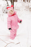 Girl in the winter Royalty Free Stock Images