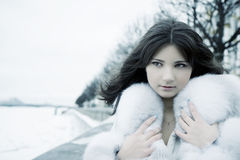 Girl in winter city Stock Images