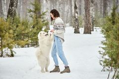 Girl in the winter forest walking with a dog. Snow is falling stock photos