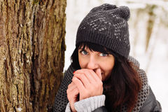 Girl in winter forest. Girl warms his hands in the winter forest Stock Photography