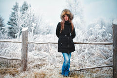 Girl winter Royalty Free Stock Photo