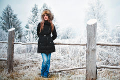 Girl winter Stock Photography