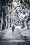 Girl in winter Stock Images