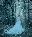 The girl is winter Royalty Free Stock Photos