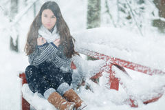 Girl in a in winter snowy forest Stock Images