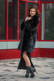 Girl in winter on the street Royalty Free Stock Photography