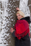 The girl in winter wood. Stock Photos