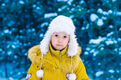 The girl in the winter in the wood Stock Images