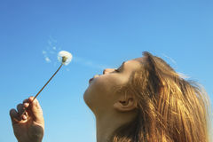 Free Girl With A Dandelion Royalty Free Stock Photo - 13983555