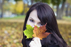 Girl With Colorful Leaves Royalty Free Stock Photos